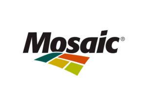 mosaic_100117